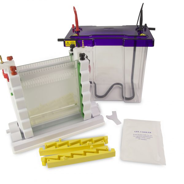 Vertical Electrophoresis Systems