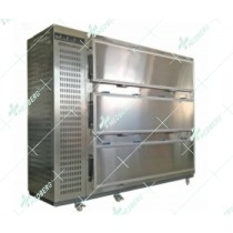 New model Danfoss Compressor mortuary body refrigerators