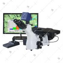 Motorized Microscope