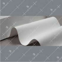 SNNP: Nylon-66 Membrane
