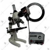 Metallurgical Upright Microscope