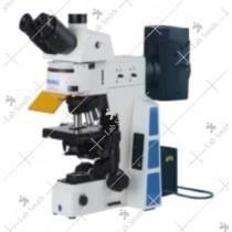Fluorescent Research Microscope