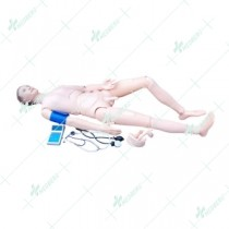Advanced Nurse Training Doll with Blood Pressure Training Arm (male/female)