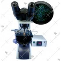 Binocular Pathological Research Microscope