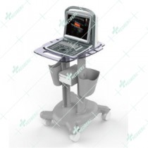 Portable Convex Ultrasound Scanner