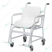 Wheelchair Weighing Scales