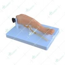 Advanced infant venipuncture leg