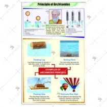 Archimedes Principal Chart