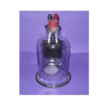 Electric bell in Jar