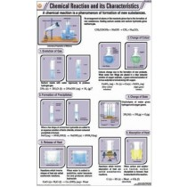 Chemical Reaction And its Characteristics chart