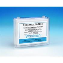 Cyclopore PC Polycarbonate Membrane, Circle