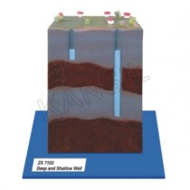 Deep And Shallow Well Model