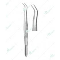 Dental Tweezers, College Serrated, 15 cm