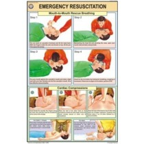 Emergency Resuscitation Chart
