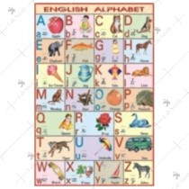 English Alphabet Charts
