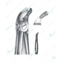 Extracting Forceps - English Pattern, lower molars