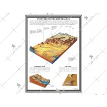 Features of the Dry Desert