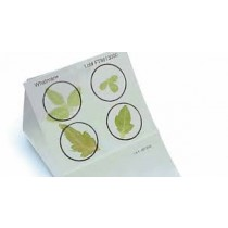FTA Plant Kit