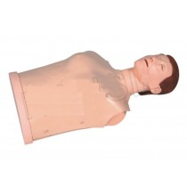 Half-body CPR Training Mankin