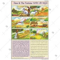Hare & The Tortoise Chart