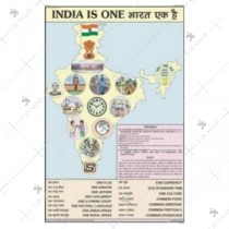 India Is United Nation Chart
