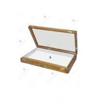 Insect Storage Box