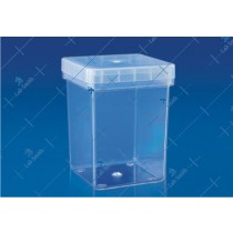 Economy Magenta Box