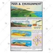 Man & Environment Chart