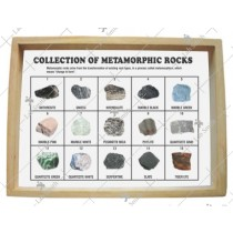 Collection of 15 Metamorphic Rocks