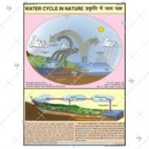 Nature Water Cycle Charts