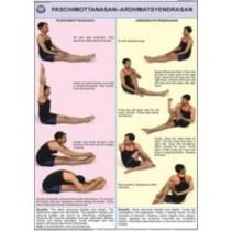 Paschimottanasan & Ardh Matsyendrasan Chart