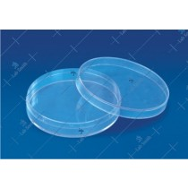 Economy Petri Dish (Culture)