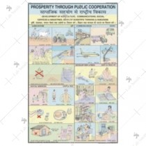 Prosperity Through Public Cooperation Chart