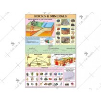 Rocks & Mineral