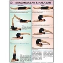 Sarvangasan & Halasan Chart