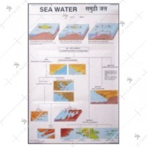 Sea Water Shoreline Map Chart