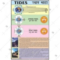Spring & Neap Tides Charts