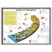 Story of Earth