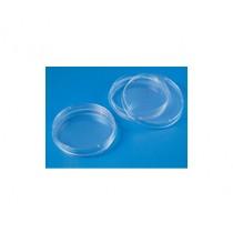 Tissue-culture-petri-dish-sterile