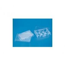 Tissue-culture-plate-sterile