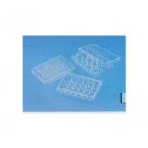 tissue culture plate sterile.jpg